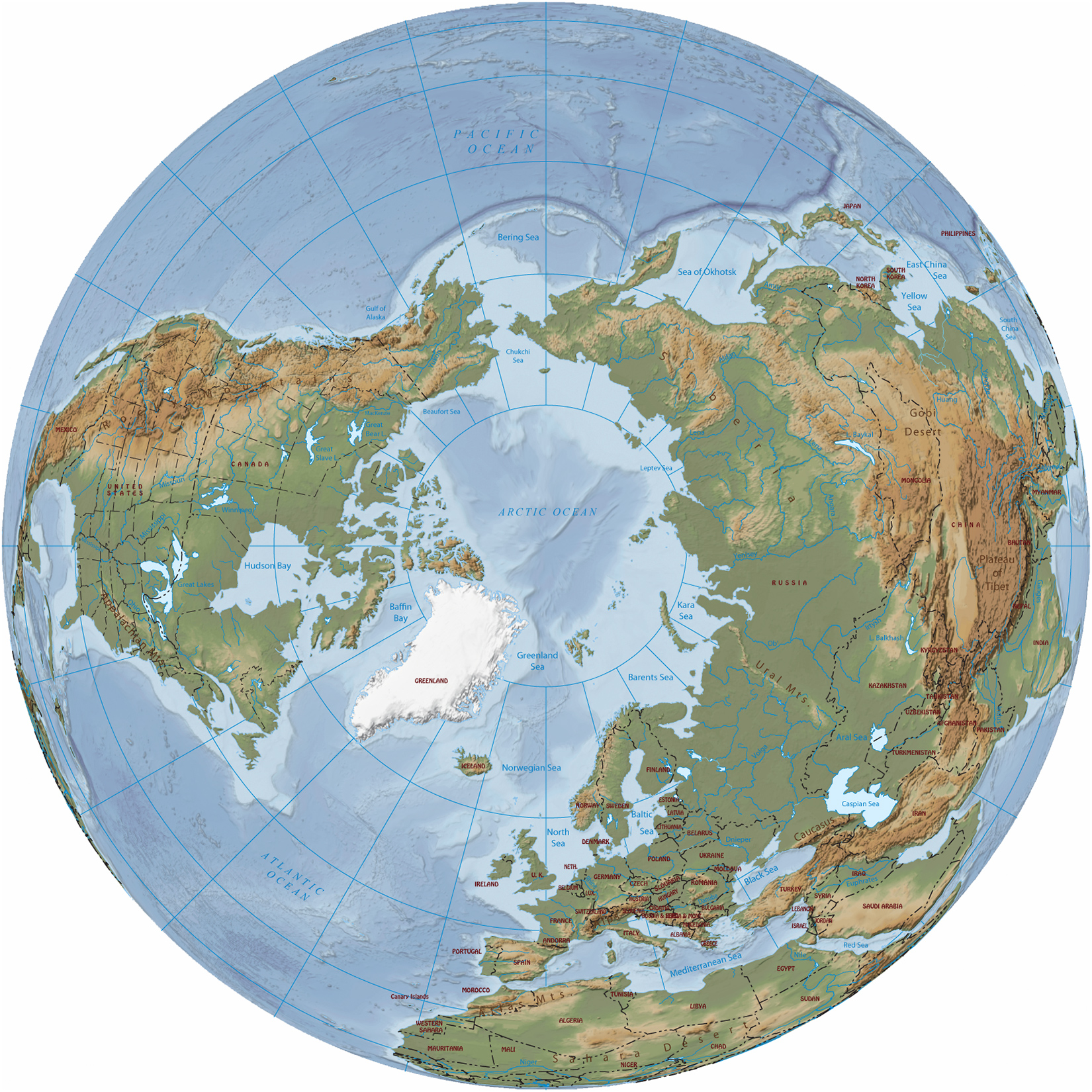 Arctic ocean region map there are 8 arctic nations canada denmark finland iceland norway sweden russia and united states of america alaska alaska political map gumiabroncs Image collections