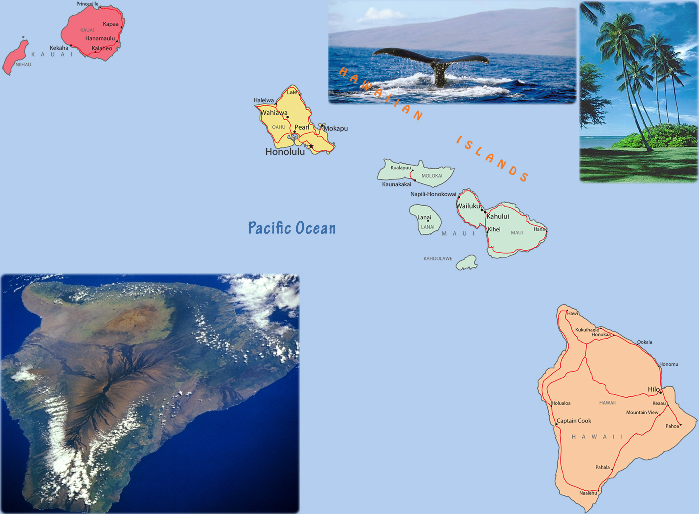 Picture of: Hawaii Political Map